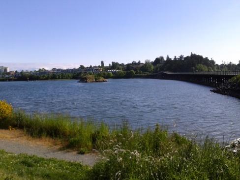 Water scene in Victoria, BC