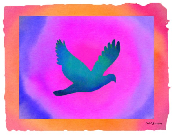 Dove artwork by Jolie Buchanan