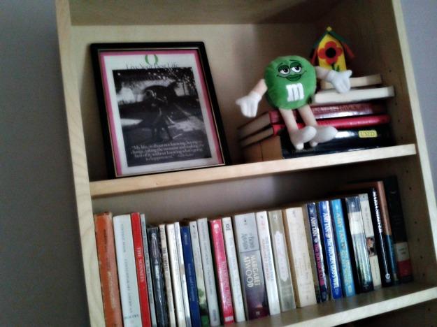Photos of my book shelves